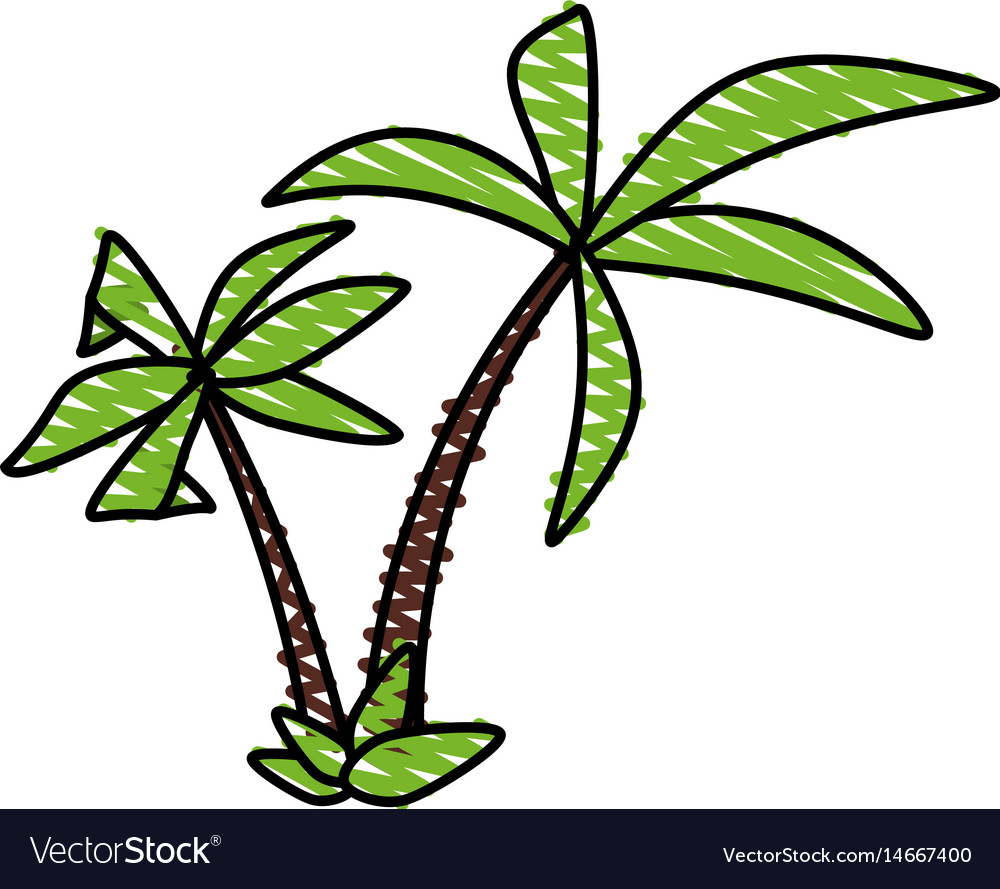 Color crayon stripe tropical palm trees vector image