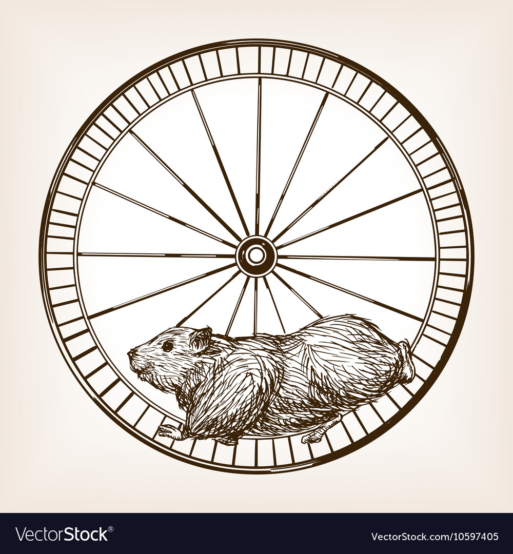 Hamster in a wheel hand drawn sketch vector image