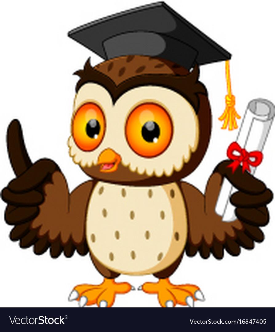 owl cartoon wearing graduation cap royalty free vector image