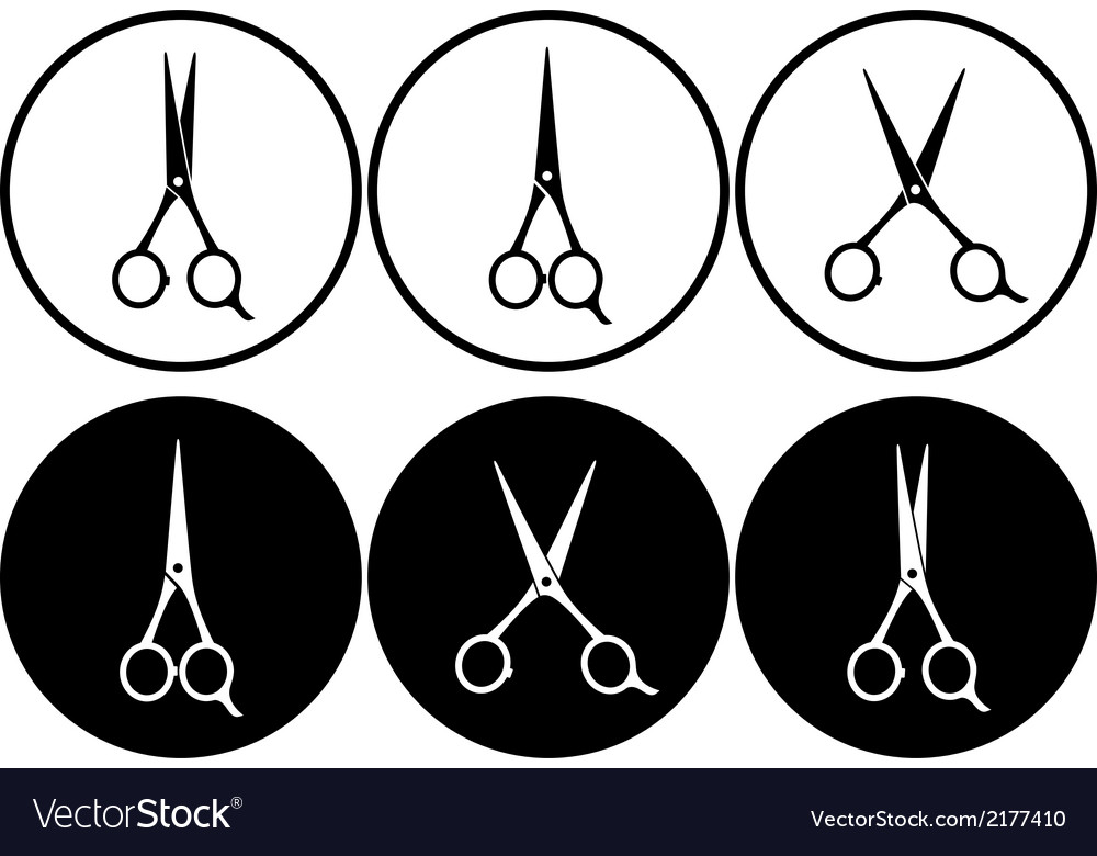 Black scissors in frame