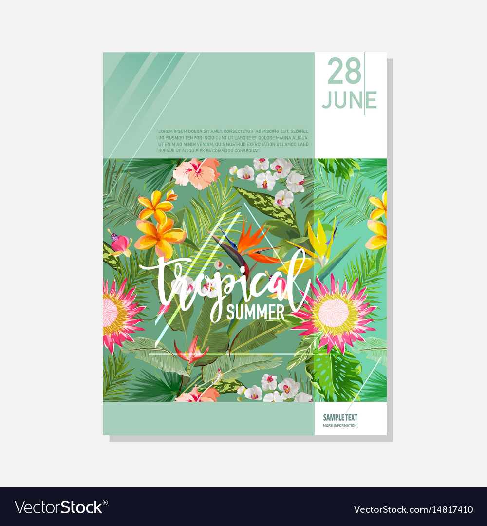 Brochure template tropical palms summer graphic vector image