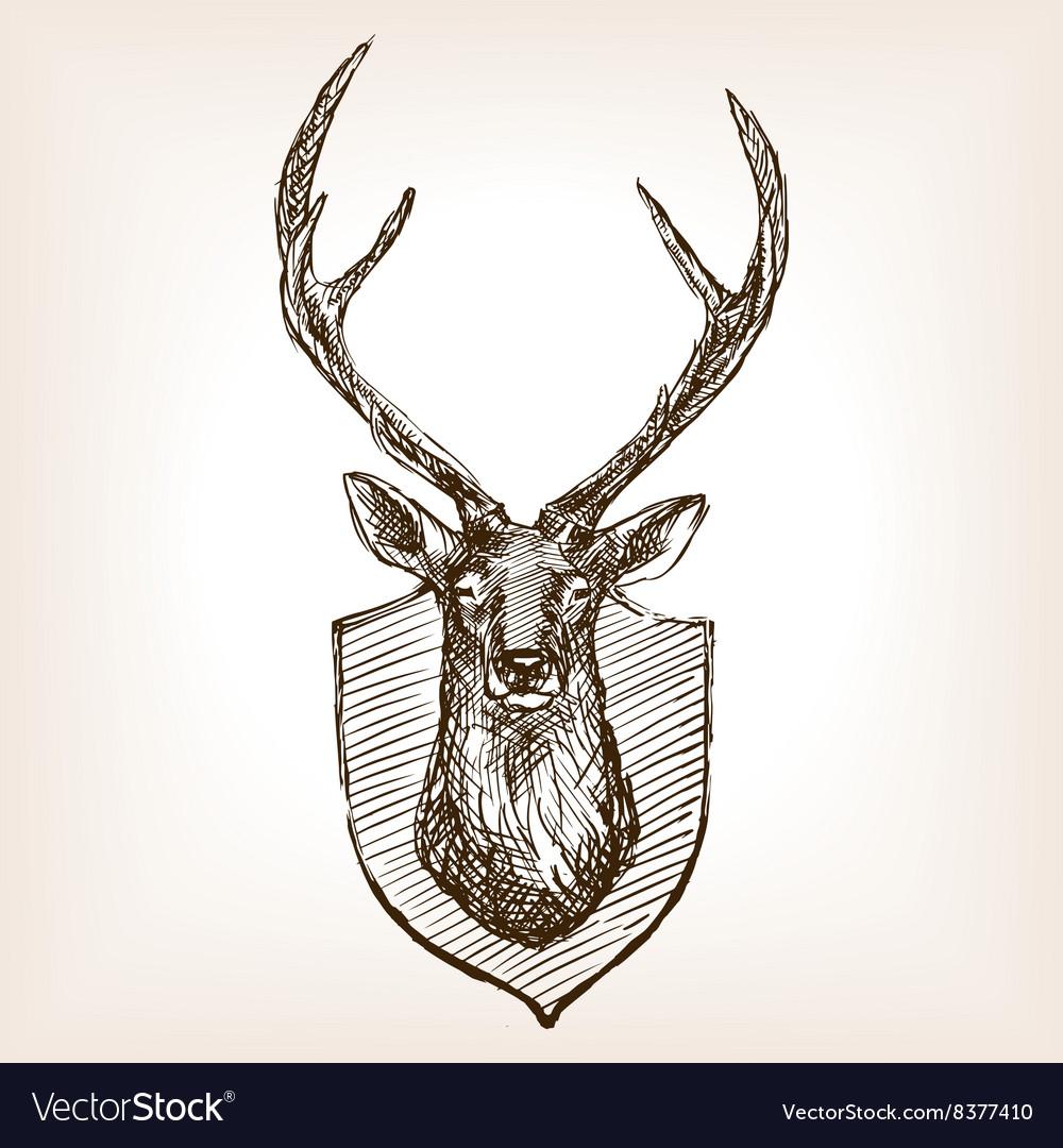 Deer head trophy sketch