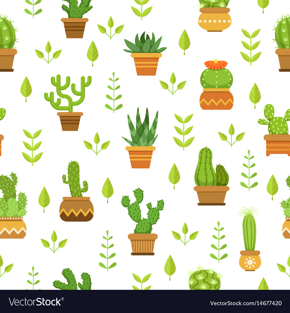 Desert plants with flowers cactus in pots vector image