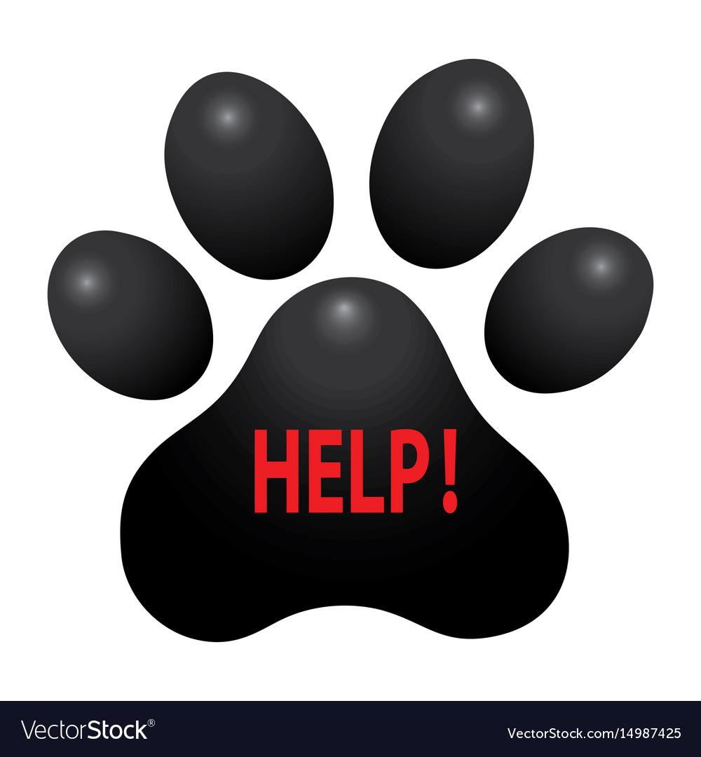 Pet animal paw care logo template