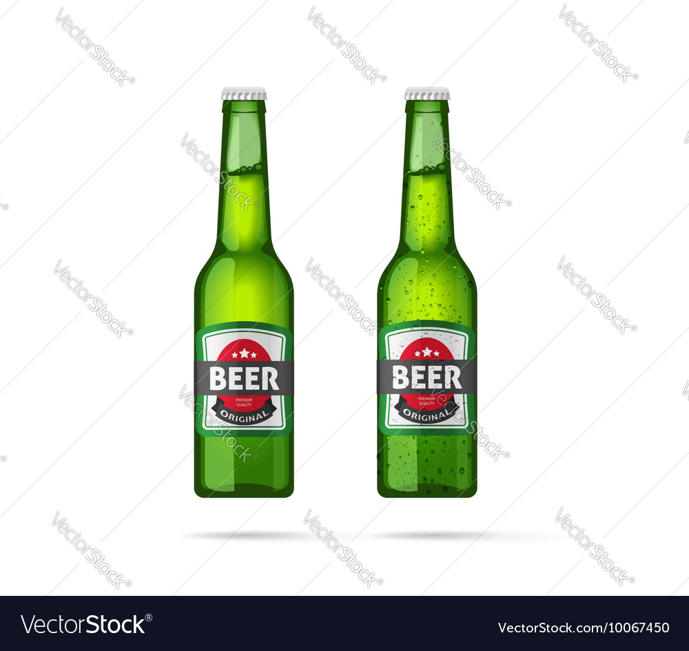 Beer bottles isolated vector image