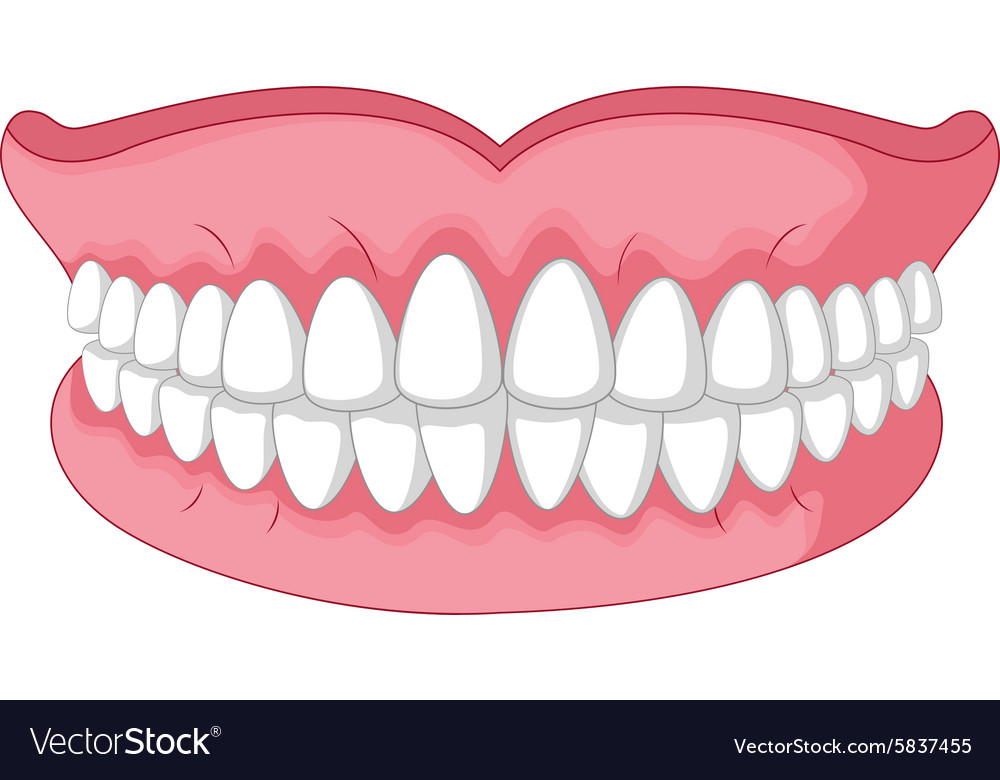 Smile Mouth Clipart Cartoon Model Of Teeth Isolated On