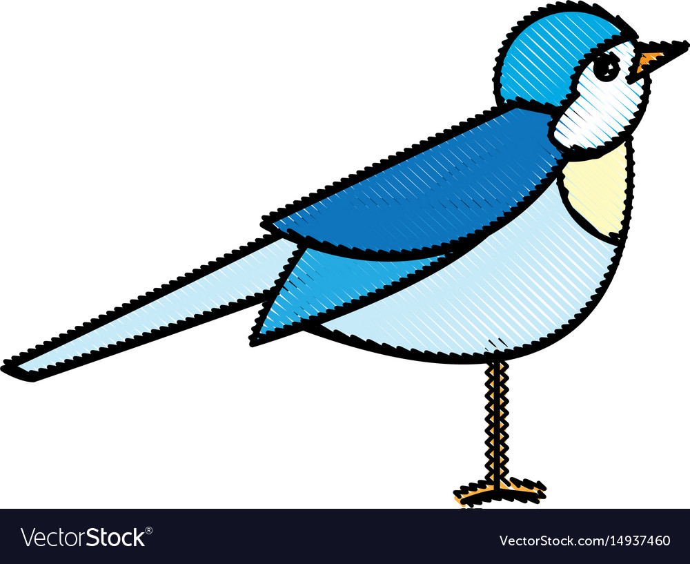 Bird nature animal flight wildlife image vector image