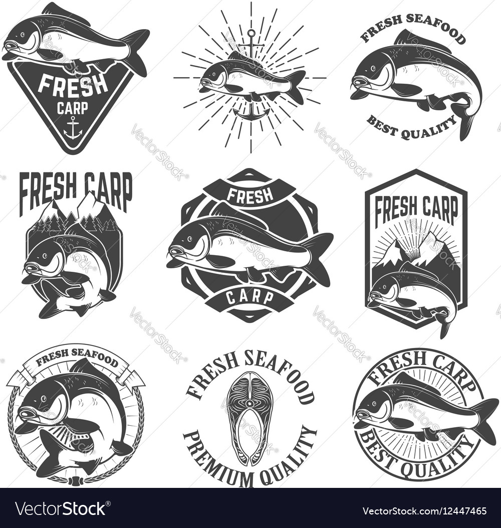 Set of the fresh carp labels emblems and design vector image