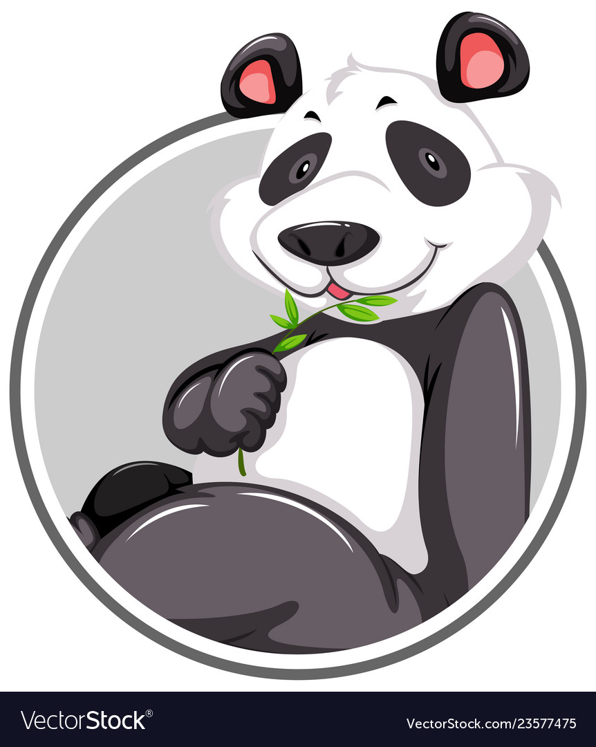 A panda sticker template vector image