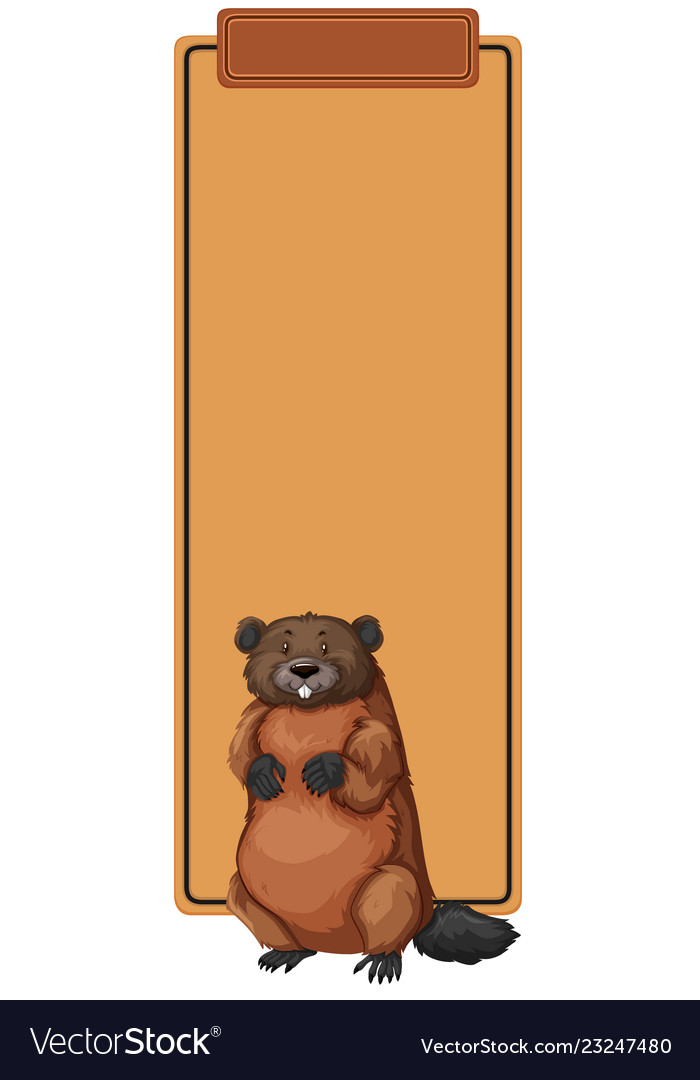 A Beaver On Border Template Royalty Free Vector Image