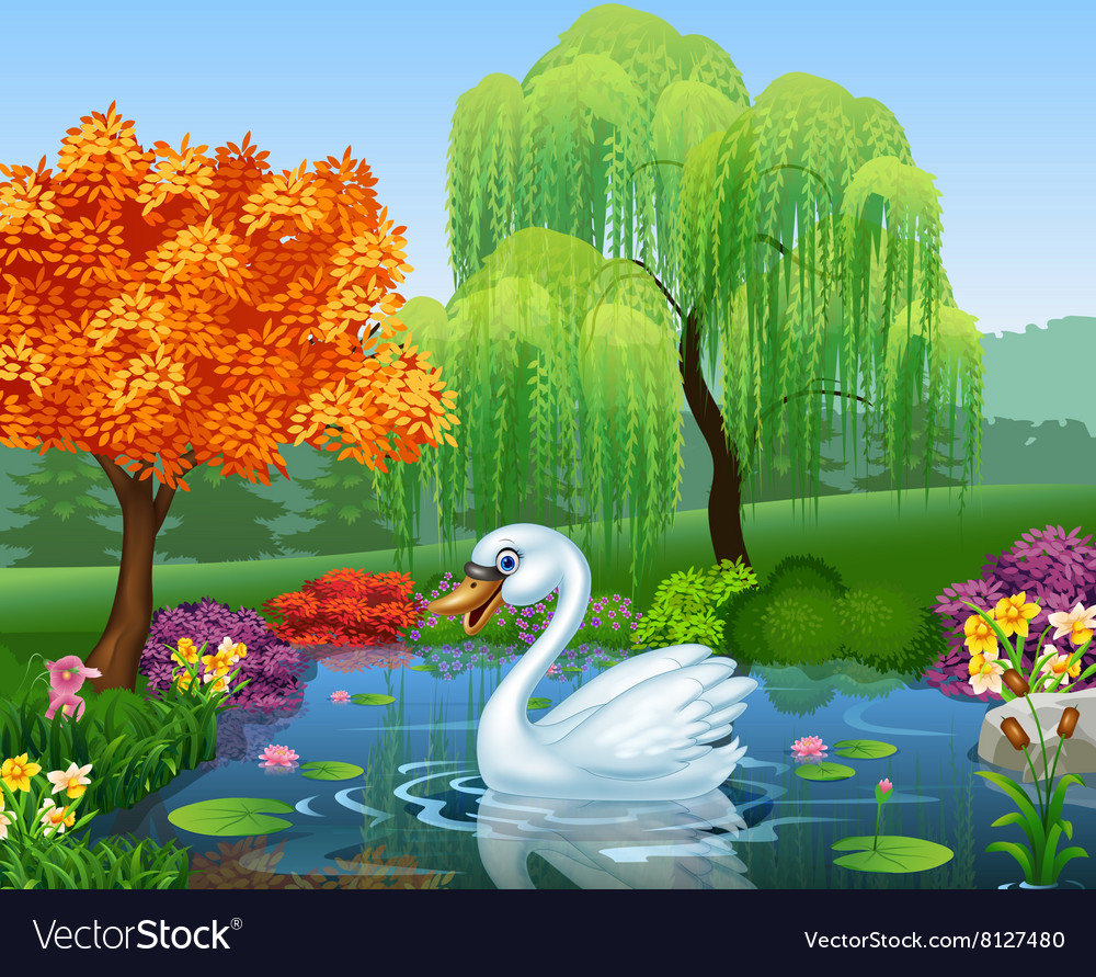 Cute swan floats on mountain river vector image