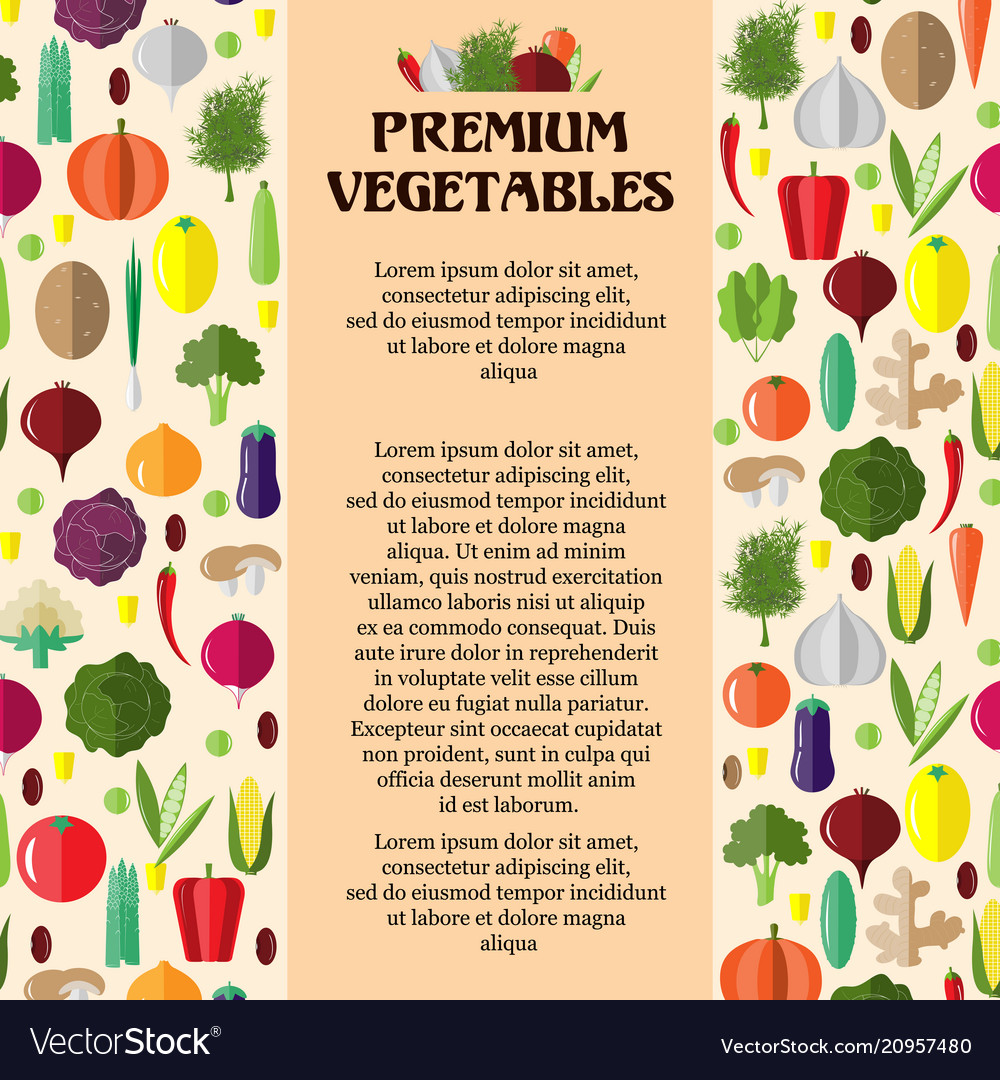 poster with colorful vegetables template for vector image