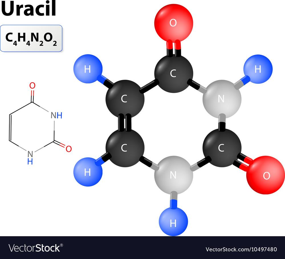 Uracil molecule