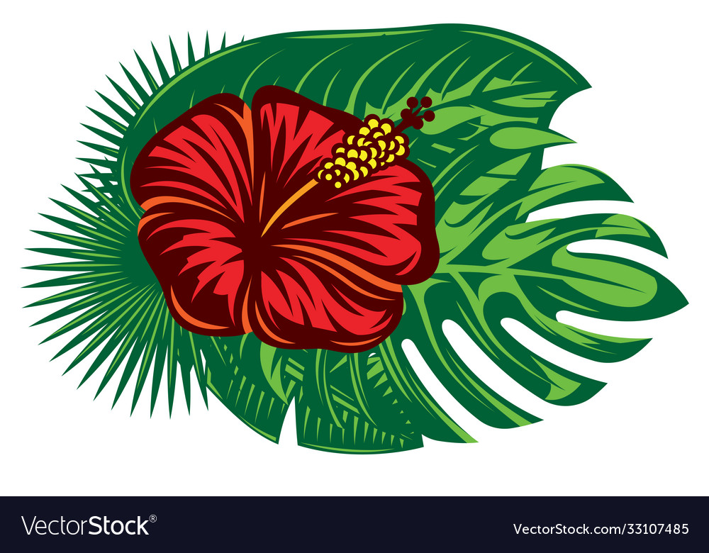 Composition hibiscus flower and various palm