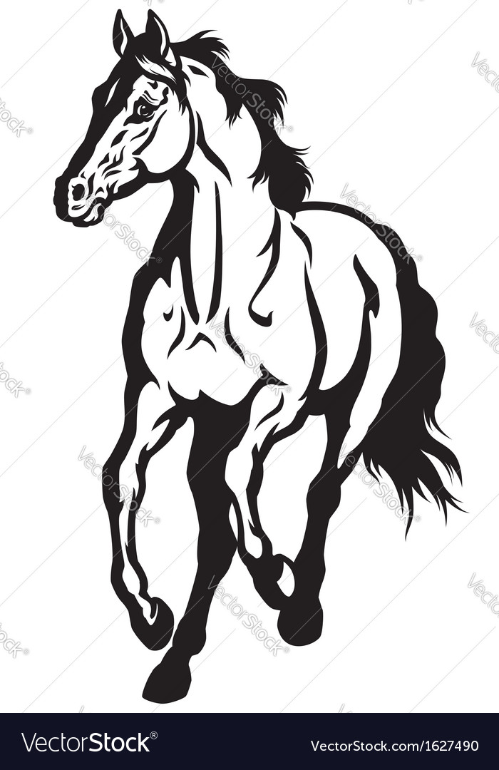 Running Horse Black White Royalty Free Vector Image