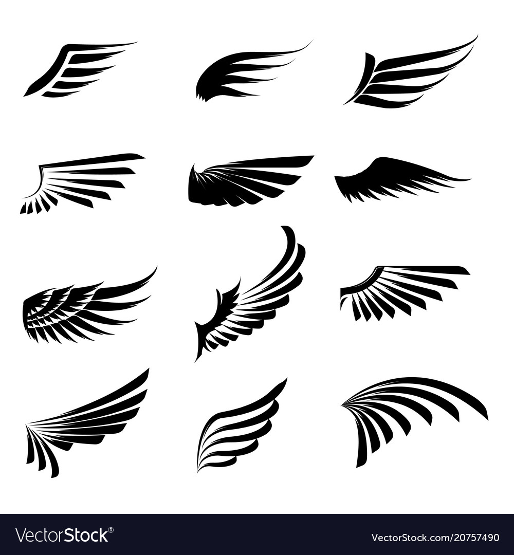 Vintage wings icon set isolated on white
