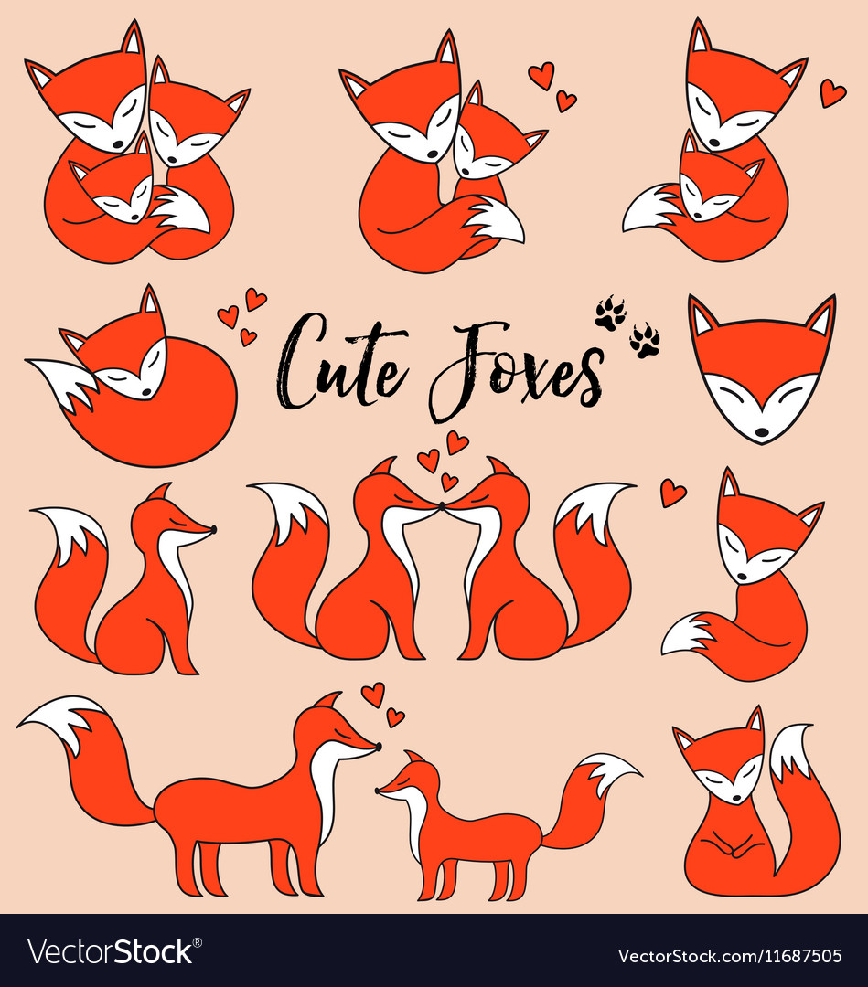 Cute foxes set