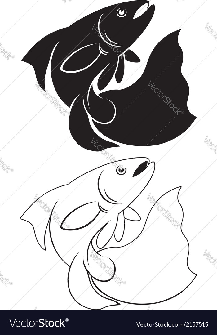 Aquarium Fish Royalty Free Vector Image Vectorstock