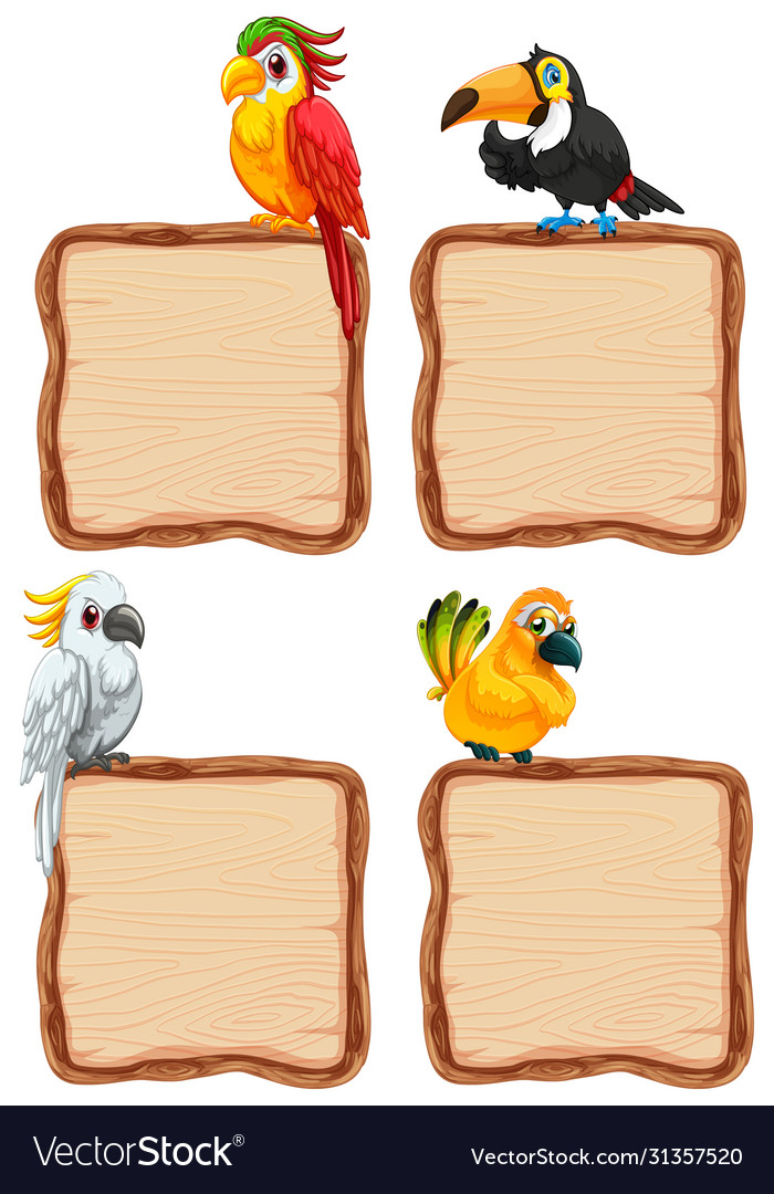Board template with cute birds on white background