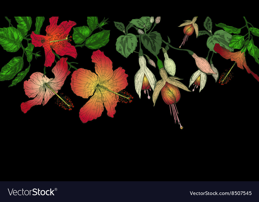 Hibiscus and Fuschia Flowers on a Dark Background