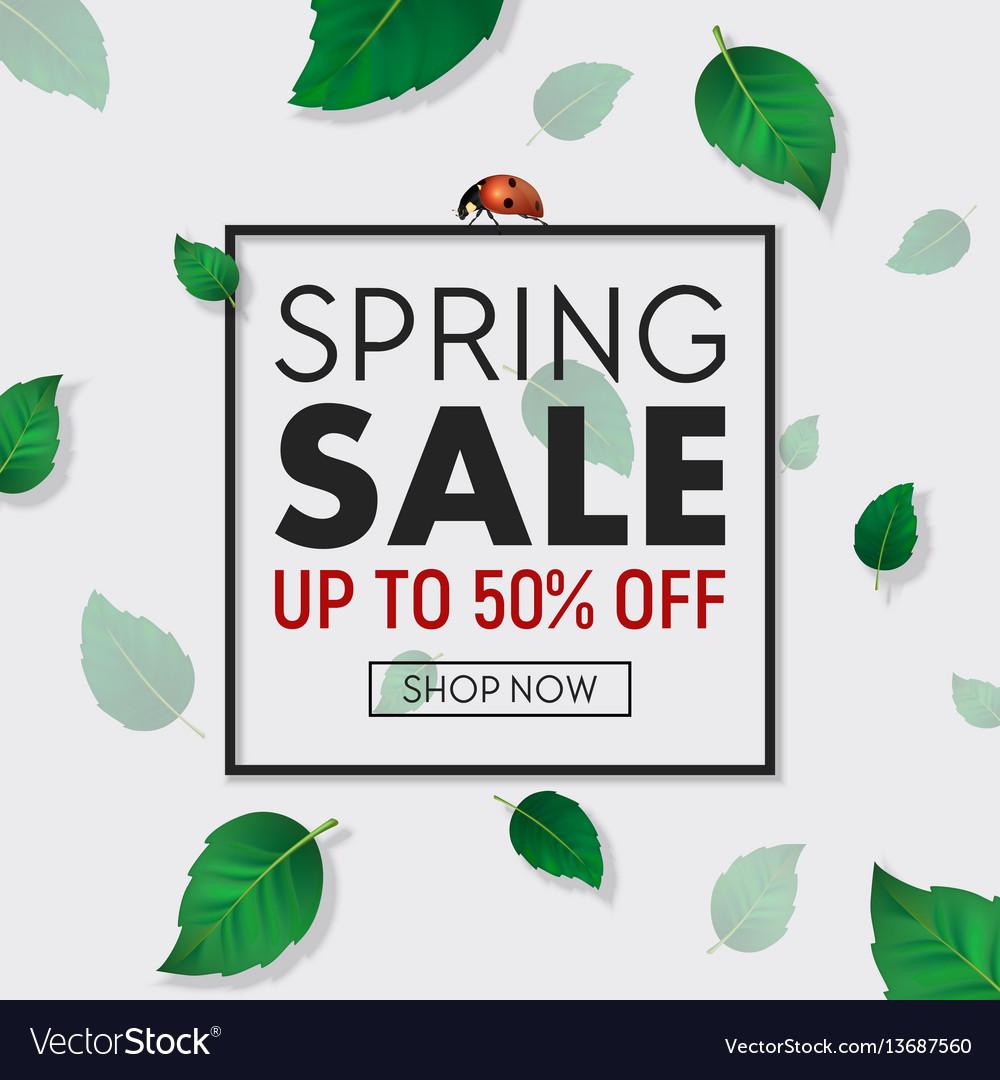 Spring sale background banner with frame