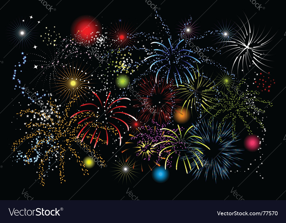 Fireworks holiday night vector image