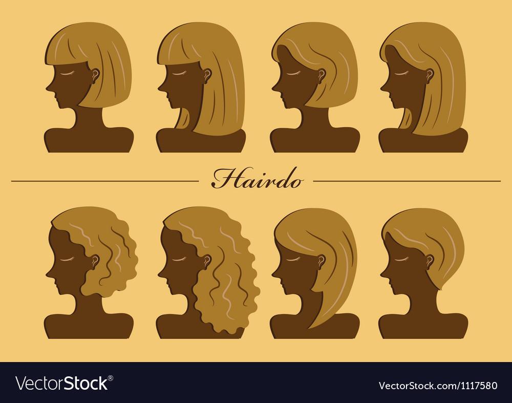 Hairdo vector image