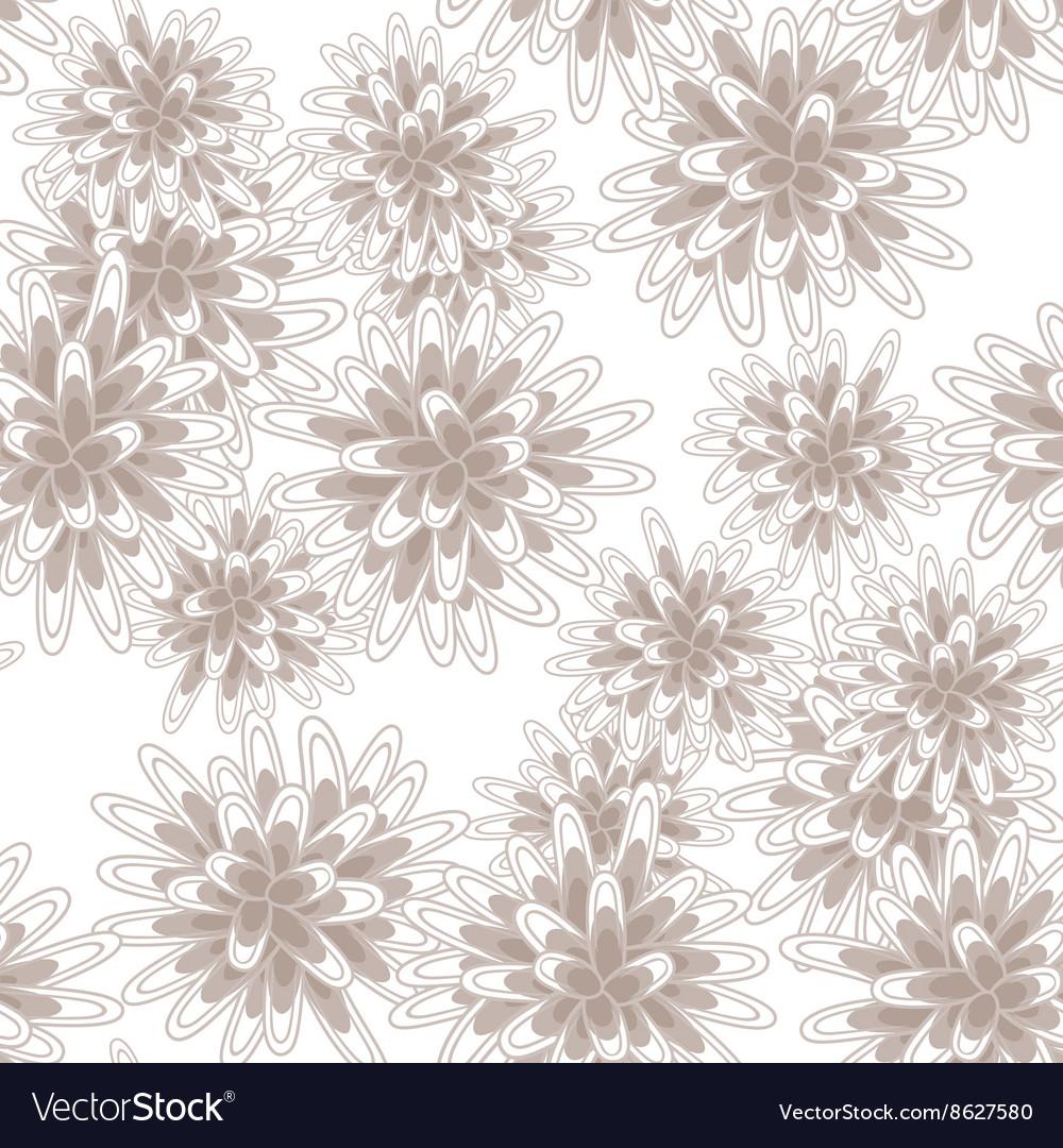 Mums flowers or chrysanthemum seamless pink vector image