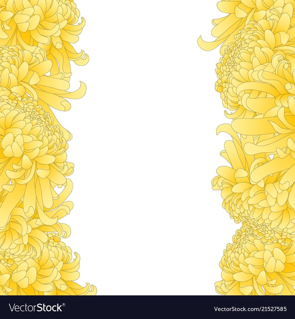 Yellow Chrysanthemum Flower Border Royalty Free Vector Image