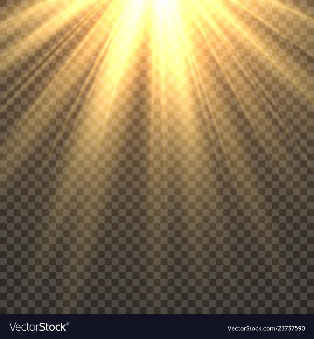 Sunlight isolated sun light effect golden sun