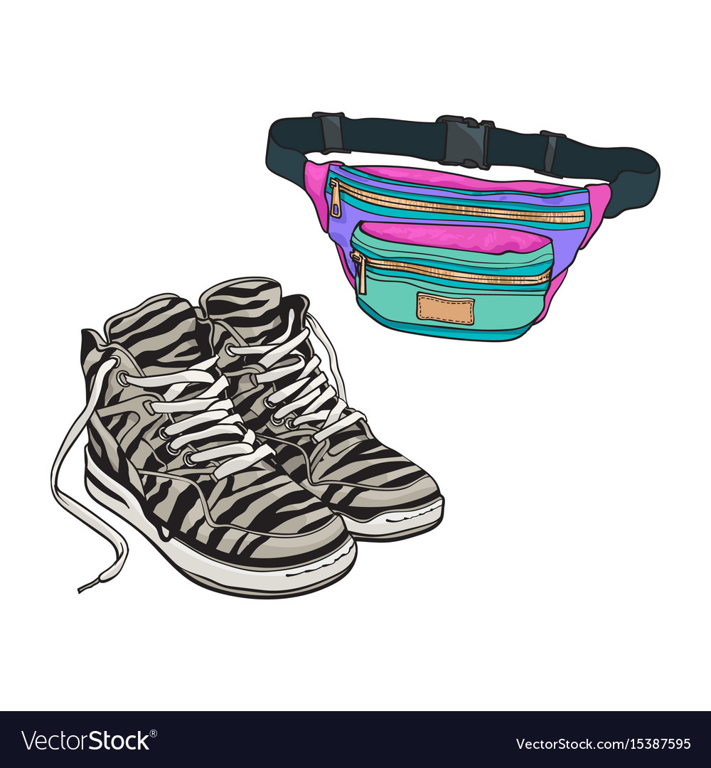 Personal items from 90s - zebra patterned sneakers vector image 53856b261229