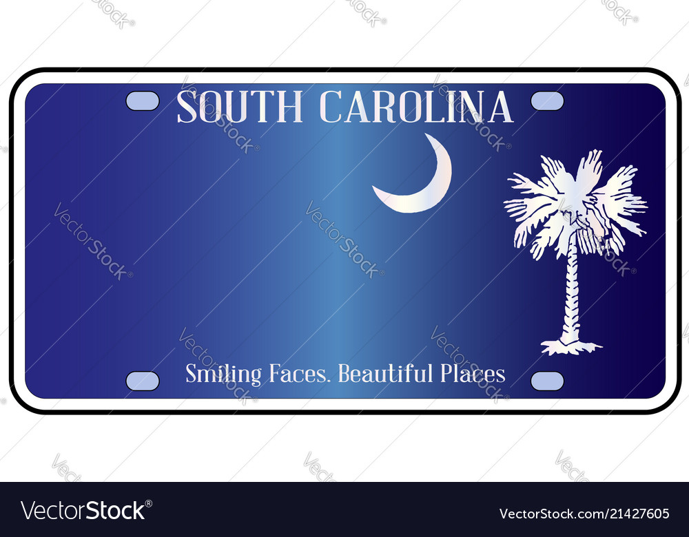 South Carolina Flag License Plate Royalty Free Vector Image