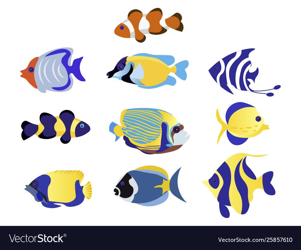Exotic fish set animal flat