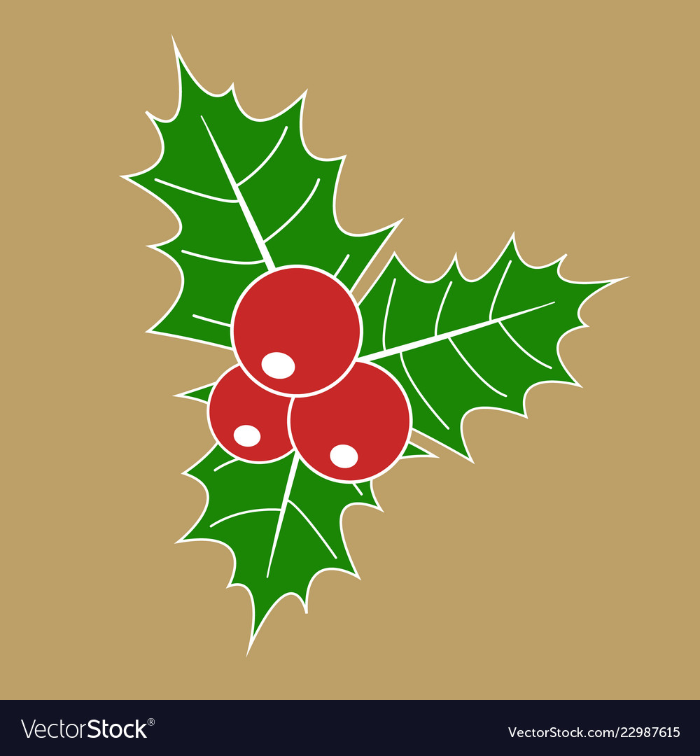 Christmas holly berry with red berries and green