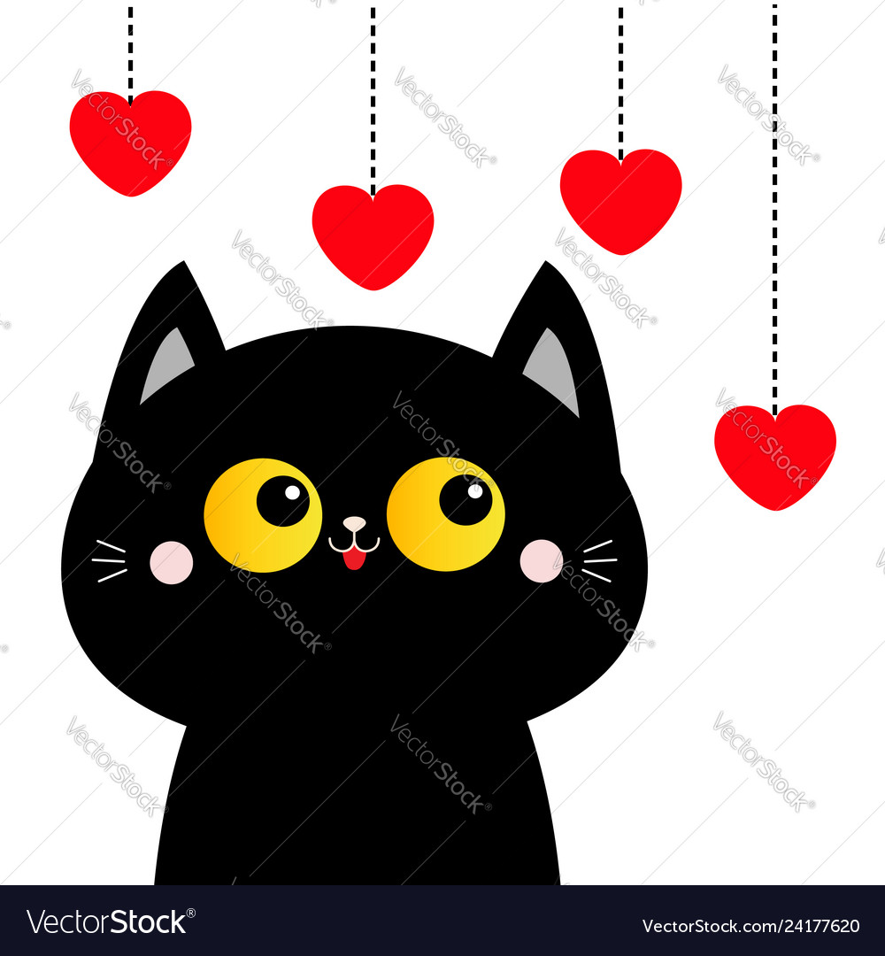 Black cat looking at hanging red hearts yellow