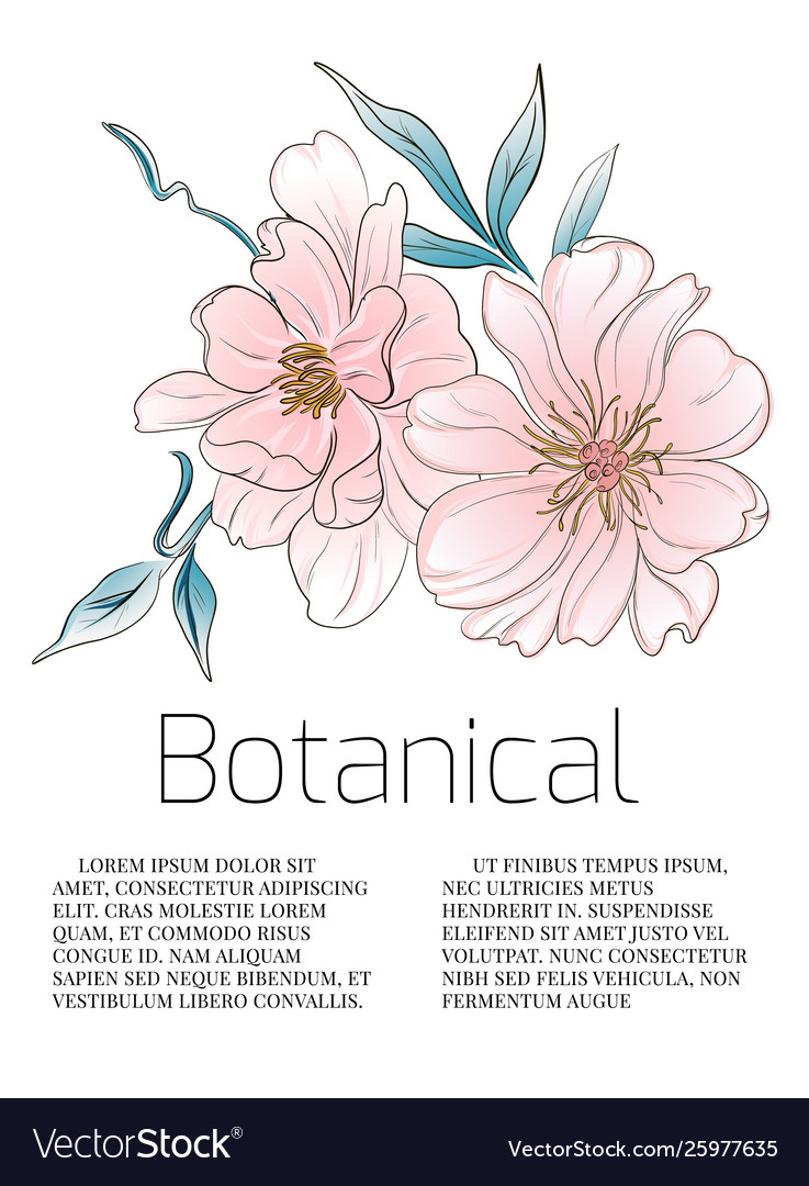 Watercolor peony flowers botanical card wedding