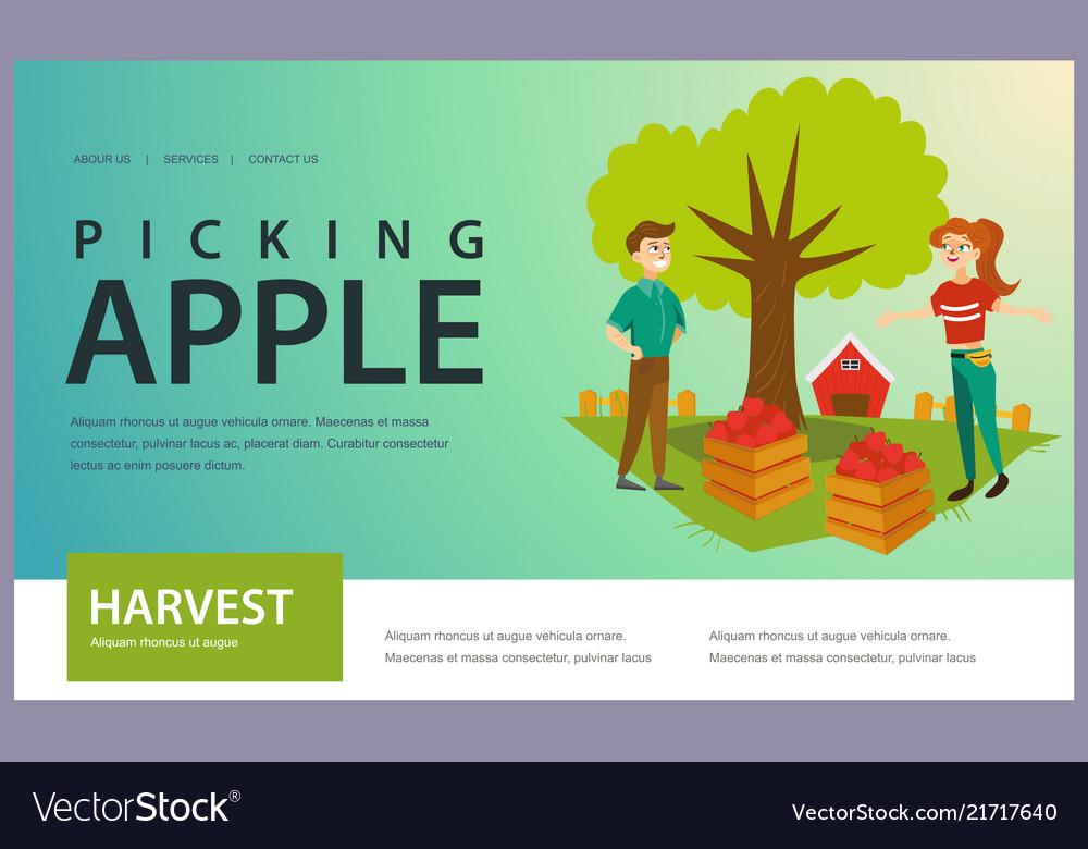 Harvesting picking fruits horizontal banner