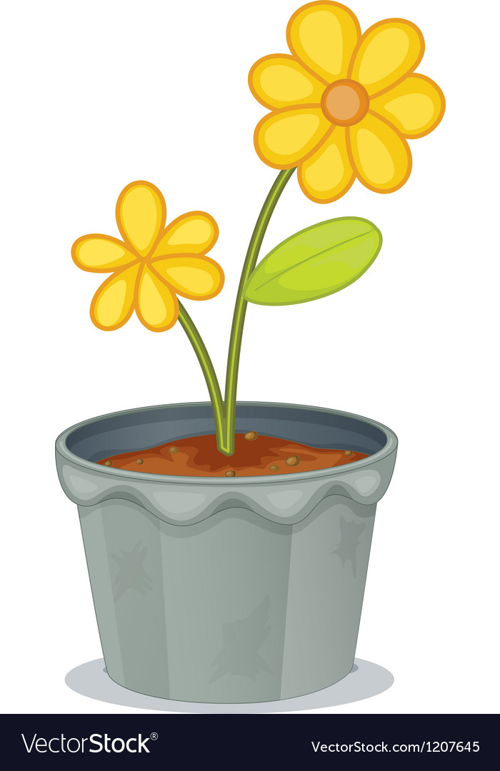 Yellow flower pot royalty free vector image vectorstock yellow flower pot vector image mightylinksfo