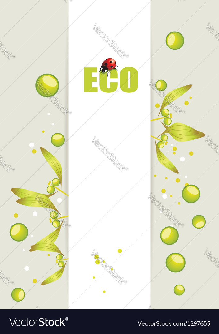Grey background with leafs and ladybird vector image