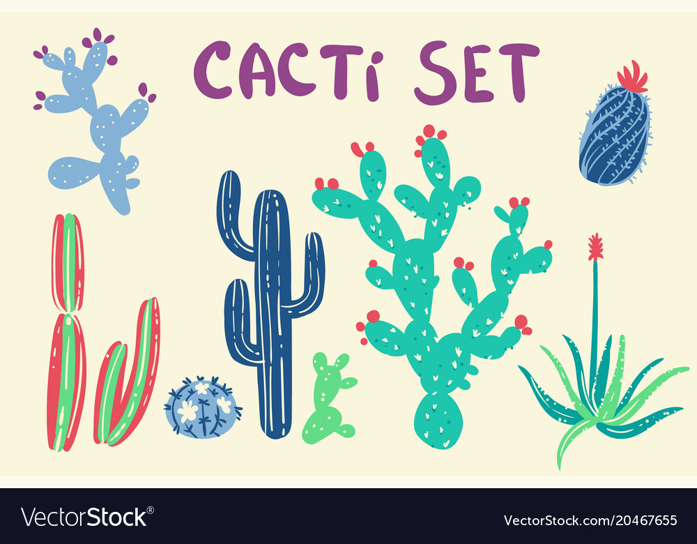 Hand drawn cactus and succulent plants