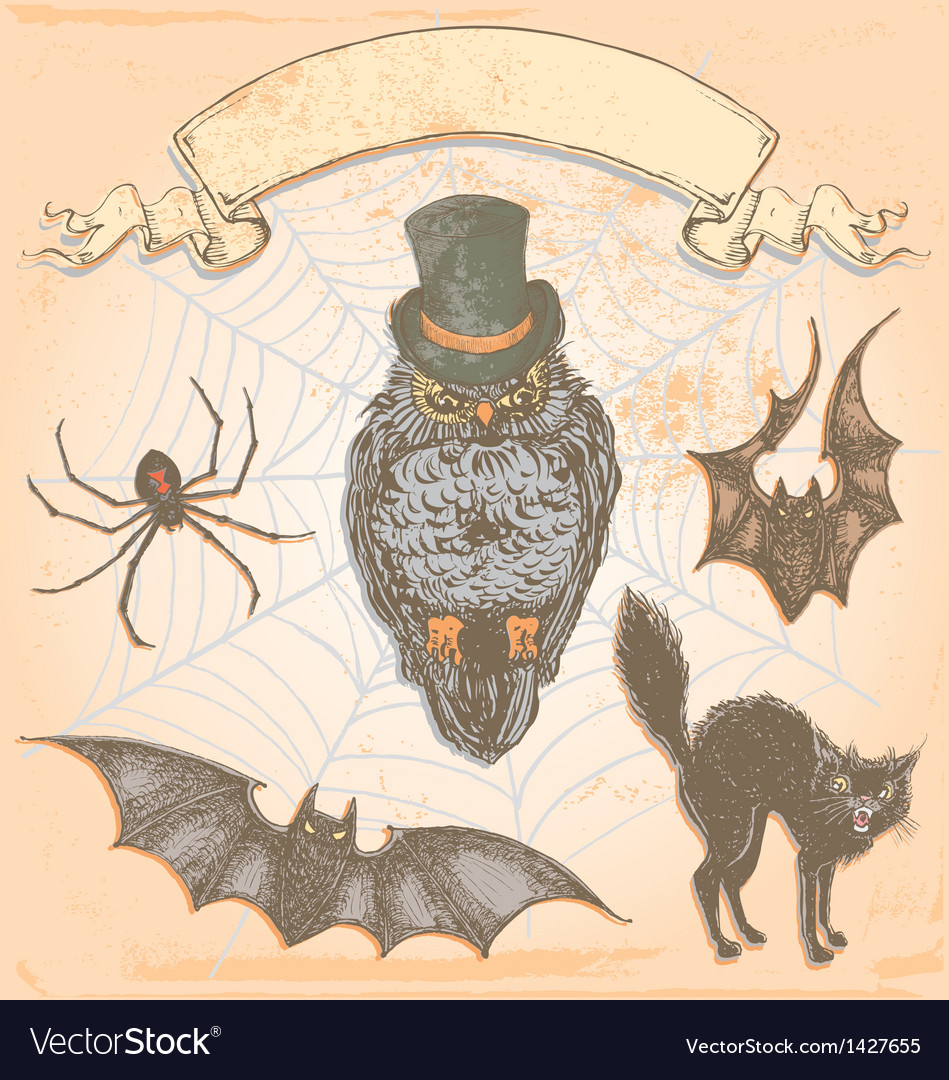 Hand Drawn Vintage Halloween Spooky Owl Set vector image