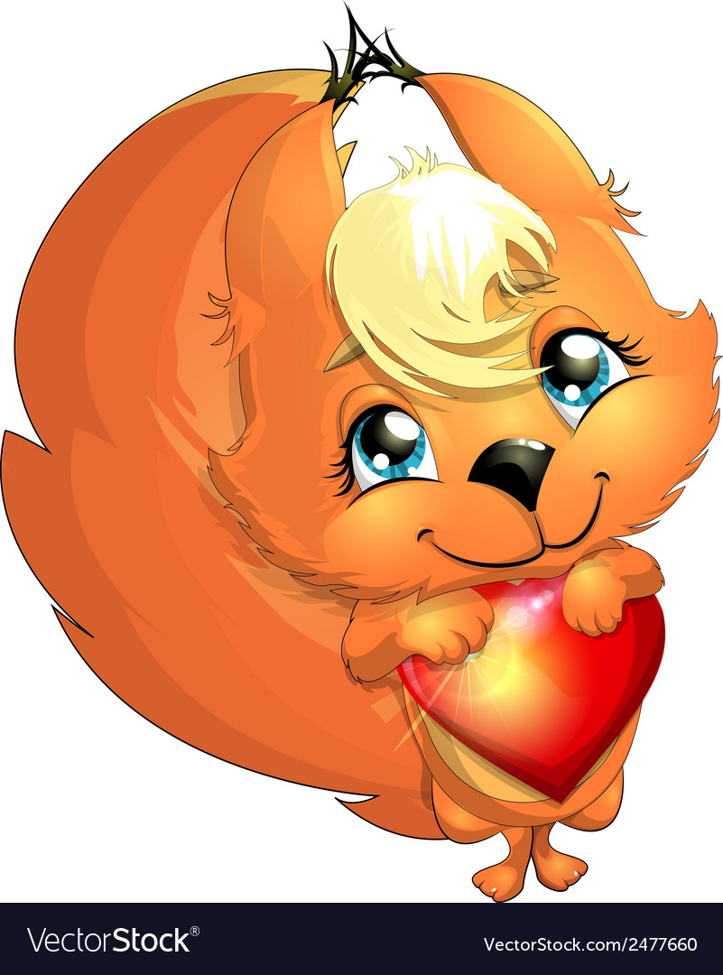 Squirrel and heart vector image
