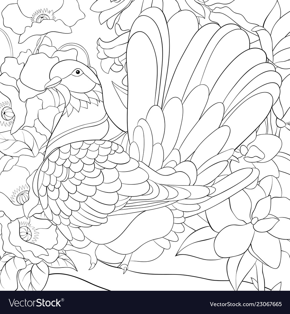 Adult coloring bookpage a cute dove on the brunch