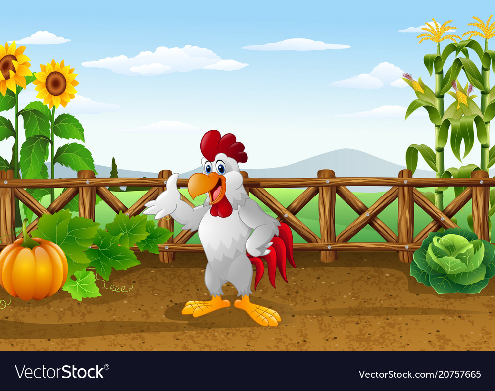 Cartoon chicken with various plants agricultural