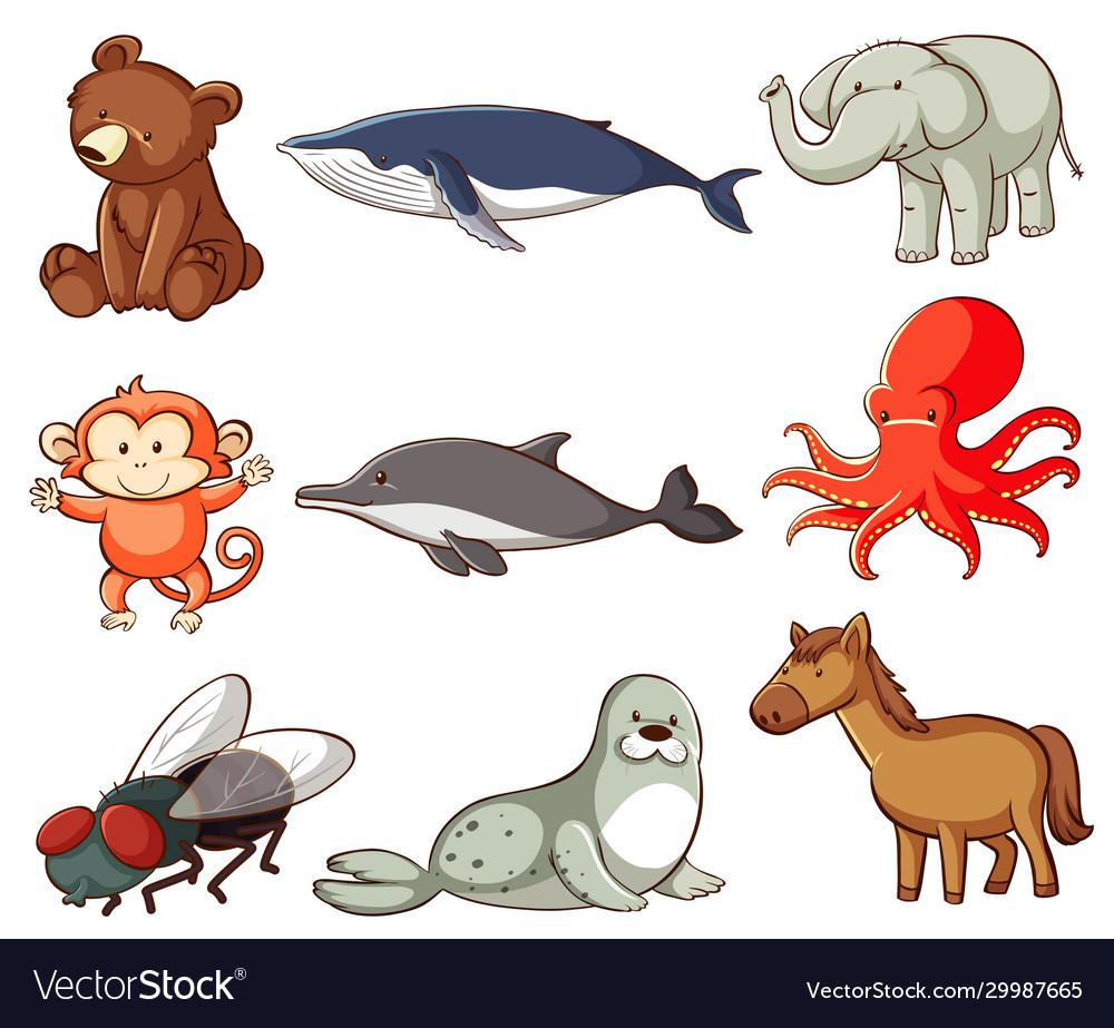 Large set wildlife with many types animals