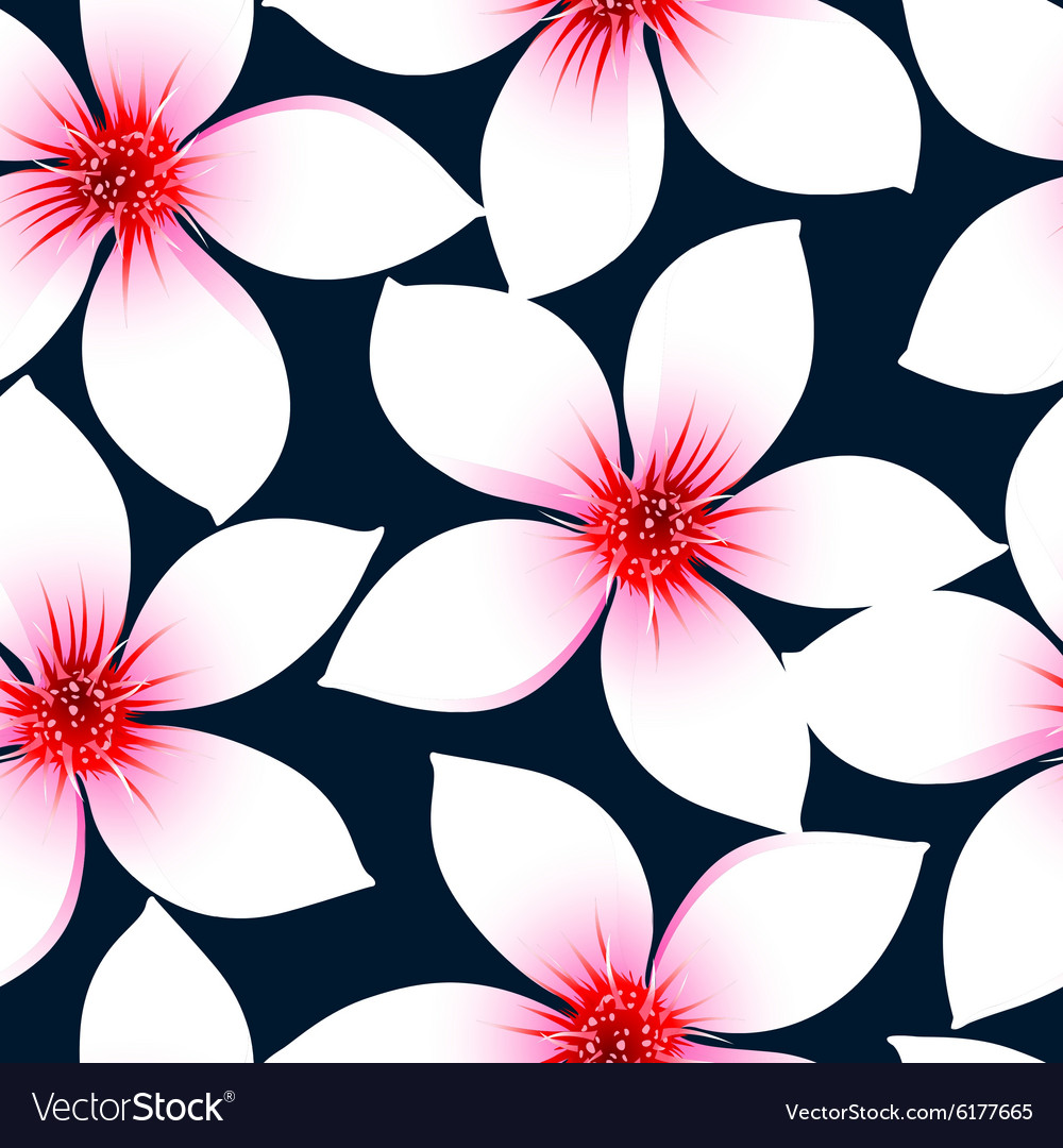White tropical hibiscus flowers in a seamless