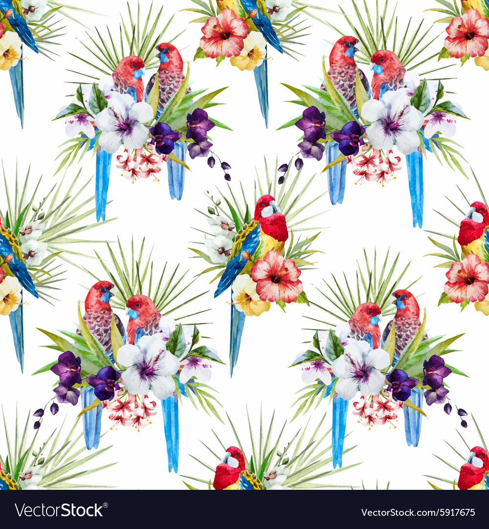 Watercolor rosella bird pattern