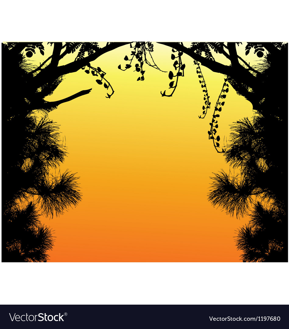 Nature Tree Silhouette vector image