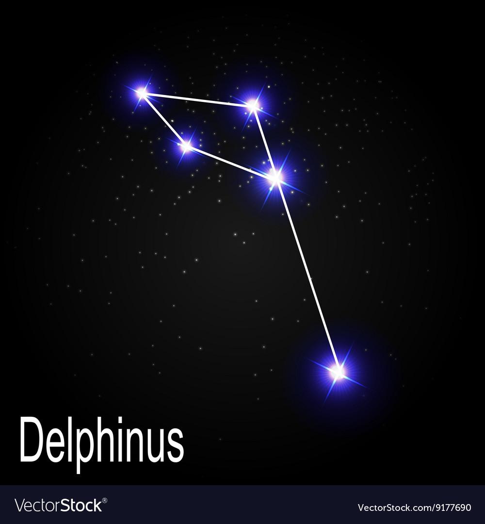 берем наш созвездие дельфин фото оранжевая