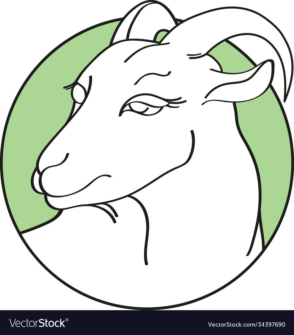 Handdrawn goat in round green frame isolated on a